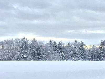 Photograph - White Christmas Rural Maine by Patricia E Sundik