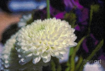 Print featuring the photograph White Chrysanthemum Flower by David Zanzinger