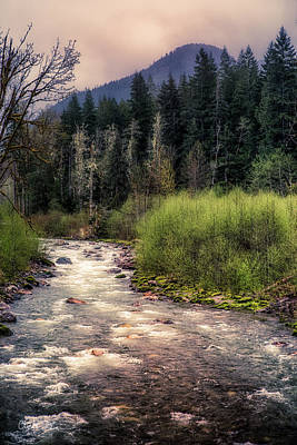 Photograph - White Chuck River by Charlie Duncan