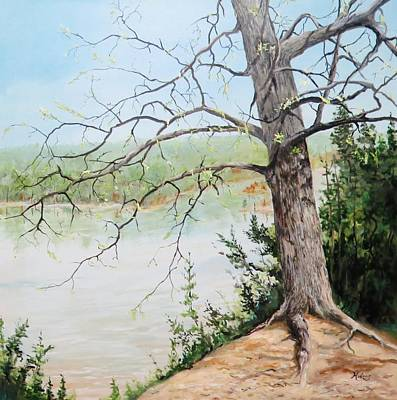 Arkansas Painting - White Cliffs In Early Spring by Danny Helms