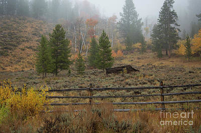 Photograph - White Cloud Cabin by Idaho Scenic Images Linda Lantzy