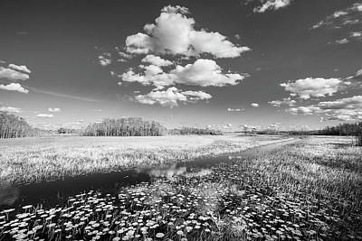 Photograph - White Clouds Over The Marsh In Black And White by Debra and Dave Vanderlaan