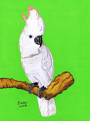 White Cockatoo Art Print by Jay Kinney