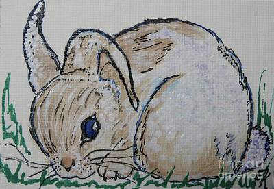 Painting - White Cotton-tail Rabbit #1003 by Ella Kaye Dickey