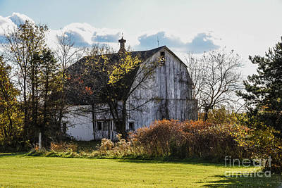 Photograph - White Country Barn by Grace Grogan