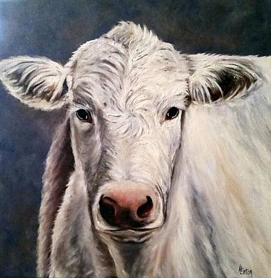 Painting - White Cow  by Helen Eaton