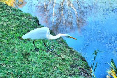 Digital Art - White Crane Hunting by Viktor Savchenko