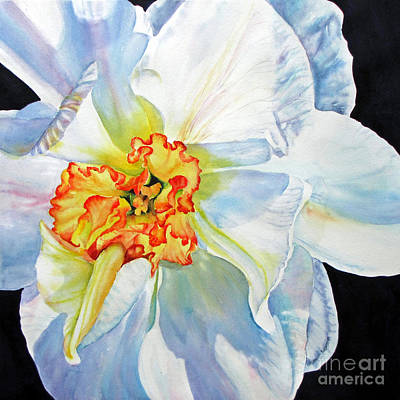 White-daffodil Art Print by Nancy Newman