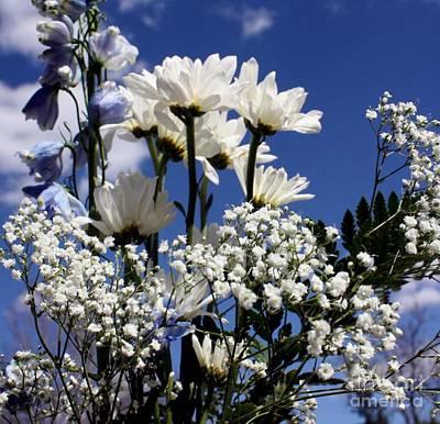 White Daisy Blue Sky Art Print by Marjorie Imbeau