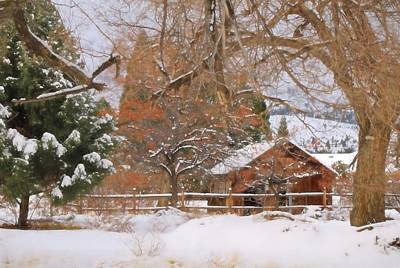 Photograph - White December by Donna Kennedy