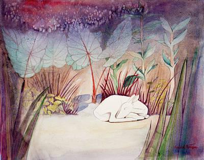 White Doe Dreaming Art Print