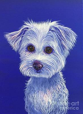 Painting - White Dog 1 by Hunter Jay
