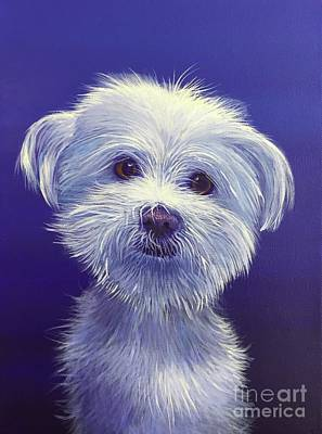 Painting - White Dog 2 by Hunter Jay