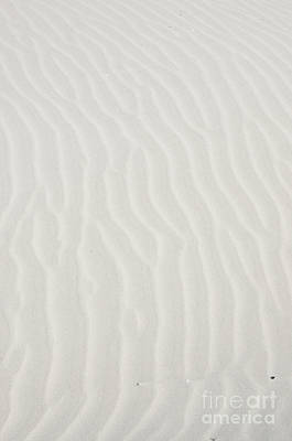 Photograph - White Dune-v by Rick Bures