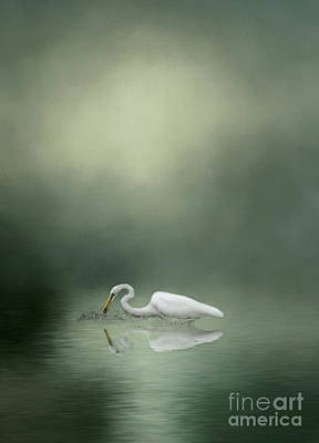 Photograph - White Egret In The Mist by Myrna Bradshaw