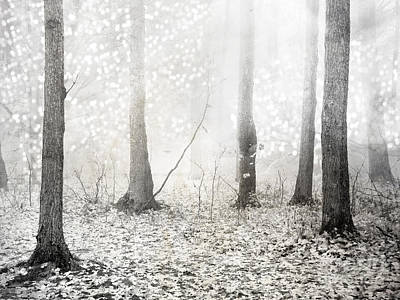 White Ethereal Mystical Trees Woodlands - Surreal White Fantasy Fairytale Nature Trees Art Print