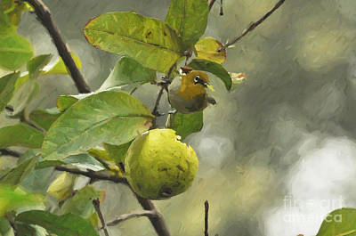 Painting - White Eye 3 by Anil Sharma