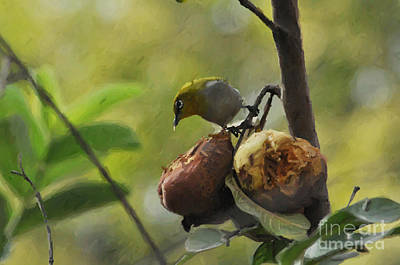 Painting - White Eye 4 by Anil Sharma