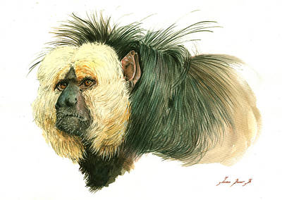 Monkey Wall Art - Painting - White Faced Saki Monkey by Juan Bosco
