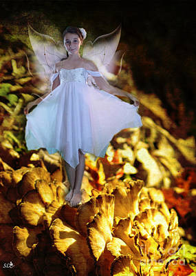 Photograph - White Fairy by Sandra Clark