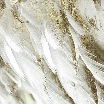 White Feathers With Gold Art Print by Mindy Sommers