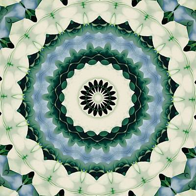 Digital Art - White Flower And Cerulean Blue Mandala by Tracey Harrington-Simpson