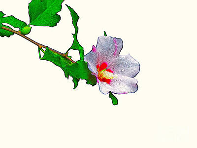 Digital Art - White Flower And Leaves by Craig Walters