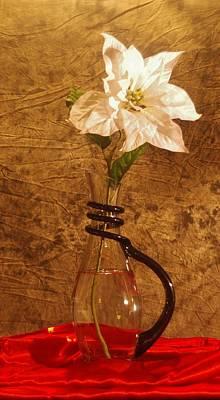 Photograph - White Flower by Buddy Scott