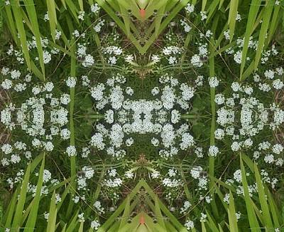 Popstar And Musician Paintings Royalty Free Images - White Flowers 1 Summer 16 Fractal Royalty-Free Image by Julia Woodman