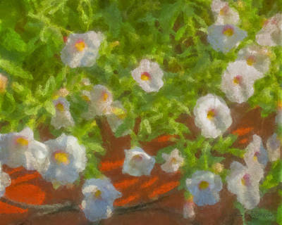 Painting - White Flowers by Bill McEntee