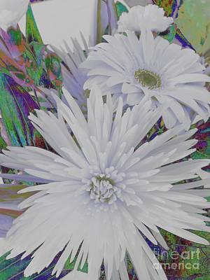 Photograph - White Flowers by Jenny Revitz Soper