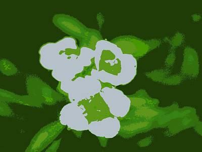 Green Digital Art - White Flowers by Kumiko Izumi