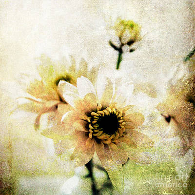 Yellow Daisy Wall Art - Mixed Media - White Flowers by Linda Woods