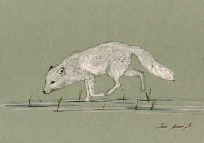 Polar Wall Art - Painting - White Fox Walking by Juan  Bosco