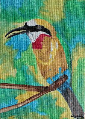 Painting - White-fronted Bee-eater  by Amy Gallagher