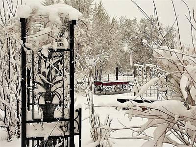 Photograph - White Garden by Deborah Moen