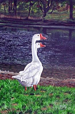 White Geese At Dusk Art Print