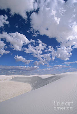 Photograph - White Gypsum Dunes by Yva Momatiuk John Eastcott