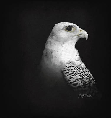 Digital Art - White Gyr On Black by Kathie Miller