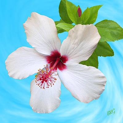 Photograph - White Hibiscus - Good Morning by Ben and Raisa Gertsberg