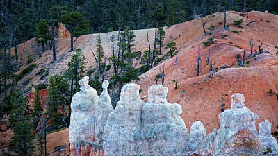 Photograph - White Hoodoos At Bryce Canyon National Park by Phil Cardamone