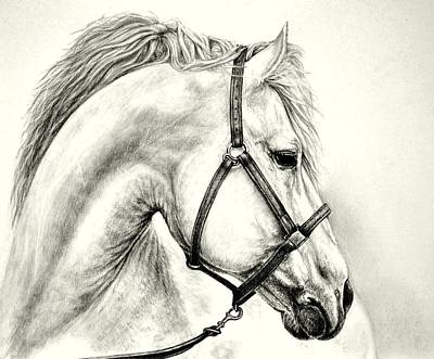 Art Print featuring the drawing White Horse by Heidi Kriel