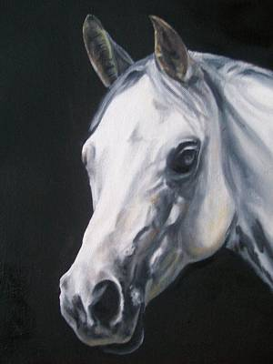 Dog Trots Painting - White Horse by Richard Mountford