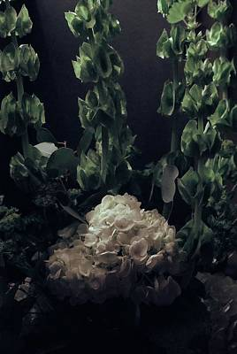 Photograph - White Hydrangea With Irish Bells by Margie Avellino