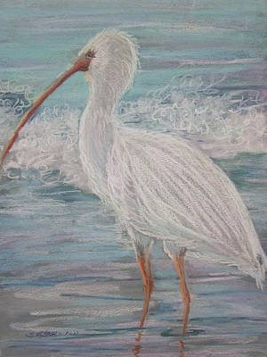 Painting - White Ibis At Dusk by Sandra Strohschein