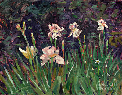 Painting - White Irises by Donald Maier