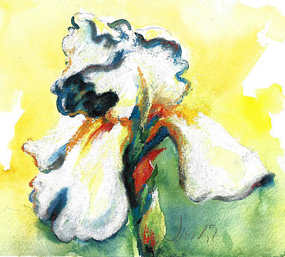 Painting - Both Sides Now White Iris by Jacki Kellum