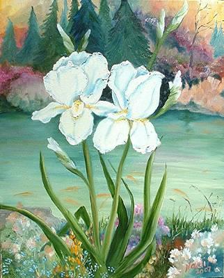 White Iris Love Art Print