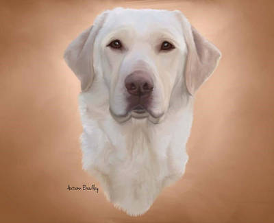 Labrador Digital Art - White Labrador by Autumn Bradley