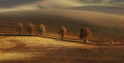 Photograph - White Ladder by Jaroslaw Blaminsky
